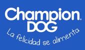 champion-dog